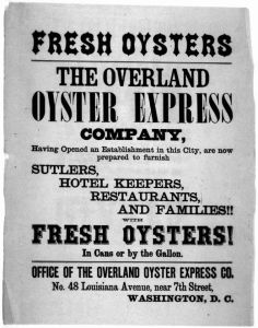 Oysters Ad